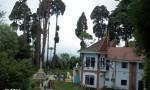 Darjeeling -Japanees Temple